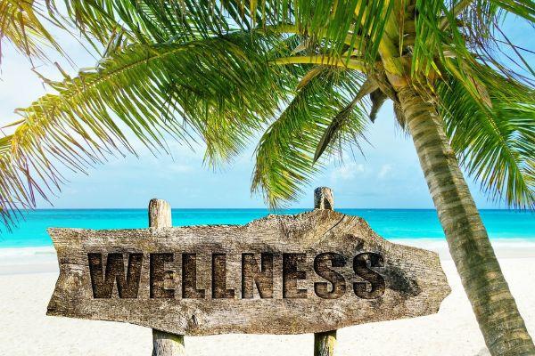 wellness 3330688 960 720 1
